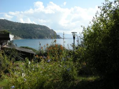 Cargèse 2013 - cafeteria view
