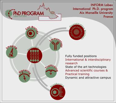 INFORM PhD program